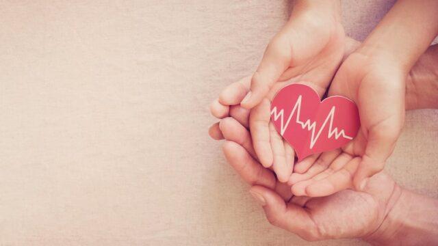 介護保険・厚生労働省の役割と役に立つ情報提供業務について