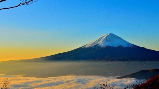 富士生命のがん保険「FWDがんベスト・ゴールド」の特徴をわかりやすく解説